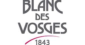 logo-mini-bdv